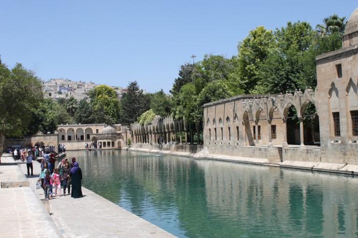 Lac aux carpes à Şanlıurfa, Turquie