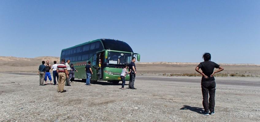 Pause pipi dans le désert kazakh