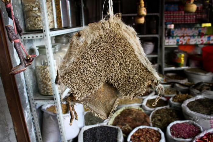 Peau de hérisson au marché d'Urumqi