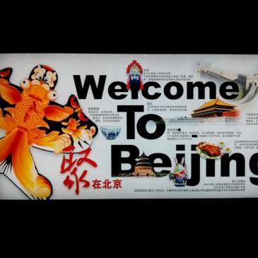 Simples péquins à Beijing