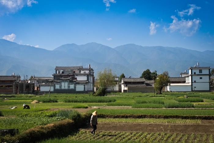 Village Bai et champs près de Dali au Yunnan