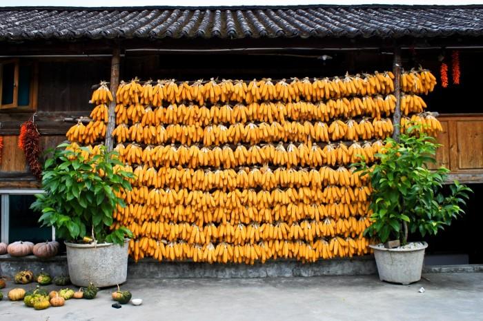 Maïs à la Naxi Familly Guesthouse