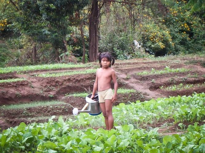 Enfant Champassak au Laos