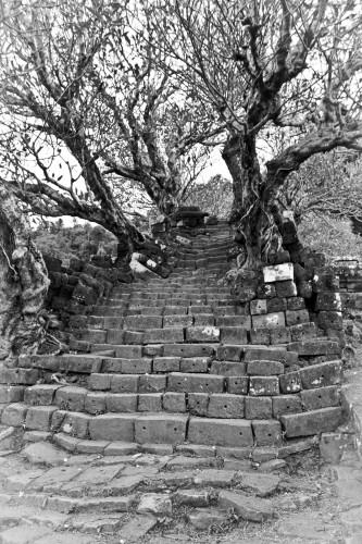 Un des escaliers qui conduisent au temple de Wat Phu