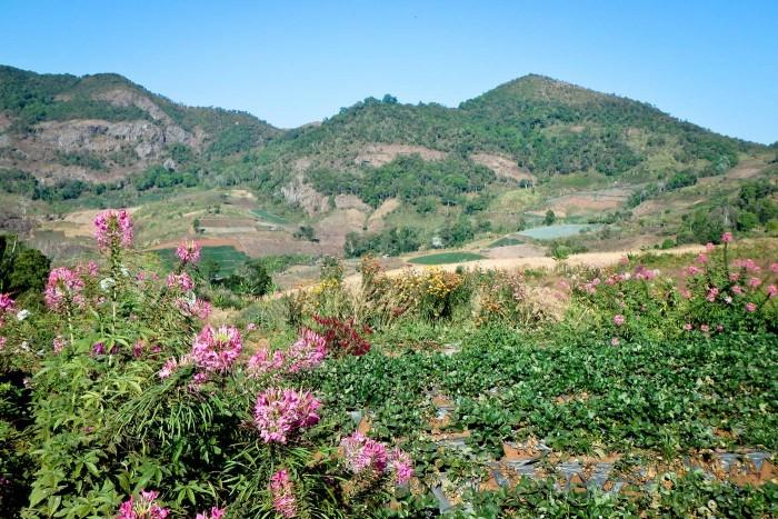 Chiang_mai_montagnes
