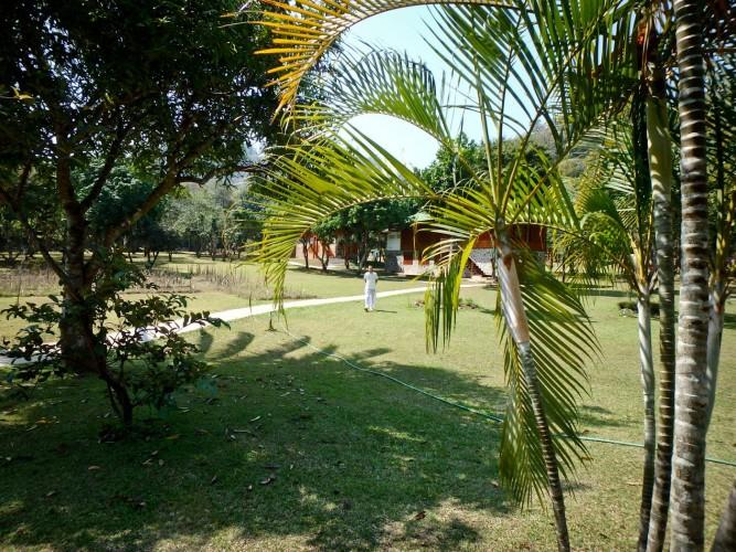 tamwua-jardin