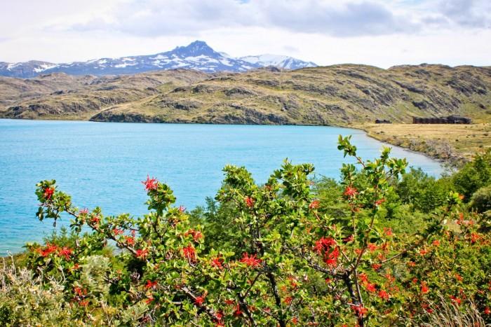 Un des magnifiques lacs du parc Torres del Paine